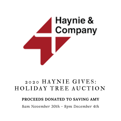 2020 Haynie Gives: Holiday Tree Auction